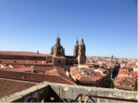 The rooftops of Salamanca.